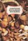 Jihočeská houbařská kuchařka