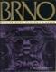 Brno / Dílo přírody, člověka a dějin