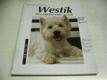 Westík. West highland white teriér (2