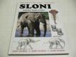 Sloni ed. SVĚT ZVÍŘAT