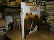 Kůň - historie chovu, plemen, péče o koně ...