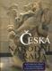 Česká národní rada (Historické sídlo, Vývoj českého parlamentarismu)