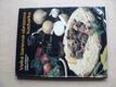 Velká barevná obrazová kuchařka (1990)