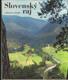 Slovenský raj (veľký formát)