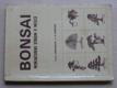 Bonsai - Miniaturní strom v misce (1983)