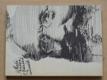 Malá knížka o Baladách a romancích (1984)