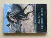 Tajemný jezdec (1992)