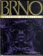 Brno - dílo přírody, člověka a dějin