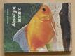 Akvarijní ryby (1981)