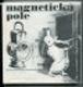 Magnetická pole (výbor)