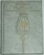 Kardiogram / verše z let 1969-1975/