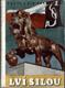 Lví silou - Pocta a dík sokolstvu