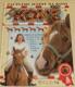 Koně, začínáme jezdit na koni