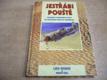 Jestřábi pouště. Vzpomínky amerického pilota na Izra