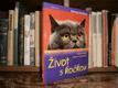 Život s kočkou - Správná péče, výživa a ...