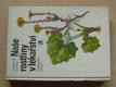 Naše rostliny v lékařství (1981)