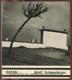 Adolf Schneeberger