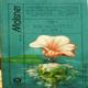 Stín lotosového květu