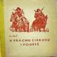 V prachu cirkusu i pouště