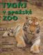 Tygři v pražské ZOO