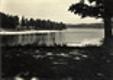Staňkov - rybník Staňkov