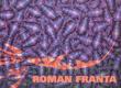 Roman Franta*