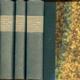 Obrazy z dějin ruské vzdělanosti. 3 svazky
