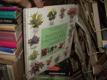 Rostliny pro váš byt