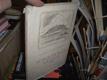 Mikoláš Aleš - knížka o jeho životě a díle