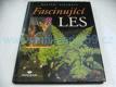 Fascinující les, dojmy, zážitky, setkání (200