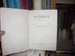Andrea - román mladých srdcí