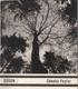 Zdenko Feyfar, edice Umělecká fotografie