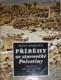 Příběhy ze starověké Palestiny. Tradice, archeologie, dějiny